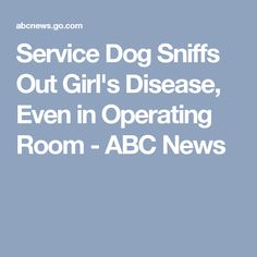 Service Dog Sniffs Out Girl's Disease, Even in Operating Room - ABC News