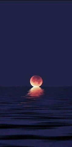 When the moon kisses the ocean. (Source unknown)