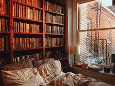 1,210 отметок «Нравится», 23 комментариев — 🌸 Susanna-Cole King (@susannacoleking) в Instagram: «In my bedroom, the best light is in winter, but I seldom get to see it, as it's often dark when I…»