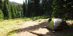 One of seven primitive campsites at Sunrise Camp.- Sunrise Camp, Mt Rainier