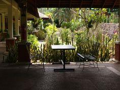 Hutan Bandar Johor Bahru in Johor Bahru, Johor. ★★★☆☆ http://youtu.be/uBJ_fOHja5k
