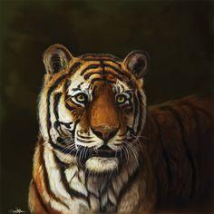 Tiger by https://cottondragon.deviantart.com on @DeviantArt