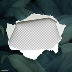 Torn paper mockup on a leafy background | premium image by rawpixel.com / eyeeyeview