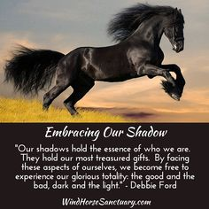 """""""Our shadows hold the essence of who we are. They hold our most treasured gifts. By facing these aspects of ourselves, we become free to experience our glorious totality: the good and the bad, dark and the light."""" -Debbie Ford ~~Wind Horse Sanctuary invites you to one of our core workshops: """"Embracing Our Shadow - Reclaiming Our Light"""". It is only through embracing our darkness that we can claim our full beauty and magnificence. Learn more at: www.windhorsesanctuary.com"""