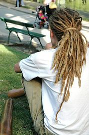 Grow Dreads