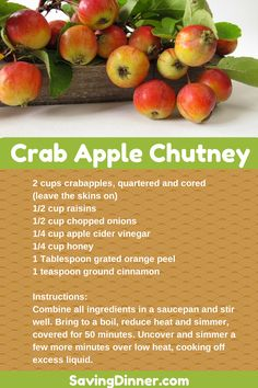 Got crab apples in your yard? Try this chutney recipe and tell us how good it is! Pin it to Save it! Fall Recipes, Great Recipes, Favorite Recipes, Interesting Recipes, Crab Apple Recipes, Crab Apples, Apple Chutney, Chutney Recipes, Canning Recipes
