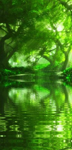 The Enchanted Forest / Karen Cox / Modern Fairytale in Green. Magic Forest, Tree Forest, Beautiful World, Beautiful Places, Beautiful Pictures, World Of Color, Color Of Life, Go Green, Green Colors