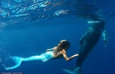 Impressive: Underwater images show Hannah swimming with dolphins and whales, which she says gravitate towards her