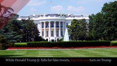 More Republicans turn their backs on Trump - Alltop Viral Cindy Mccain, Kayleigh Mcenany, Best Speakers, Swing State, Donald Trump Jr, Former President, Debt, Obama, Presidents
