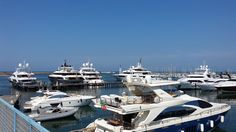 Contact one of Yachting Pages' online marine businesses or marinas today. Boat, Country, Search, Dinghy, Rural Area, Searching, Boats, Country Music, Ship