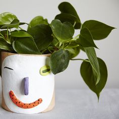 wink wink, our newest Face Planter has arrived