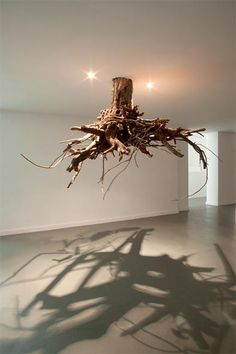 Wonderful tree root art, interesting on different levels....Rooted yet suspended...tangled yet mere shadows to walk through.....'humus 2012' by giuseppe licari