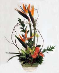 beach house modern floral arrangement - Google Search
