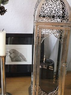 love the lantern and the bird drawing