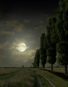 The moon stood silent in the sky, And looked upon our earth: The clouds divided, passing by, In homage to her worth. ~ A Walk By Moonlight, Henry Derozio Moon Shadow, Nocturne, Beautiful Moon, Beautiful Places, Shoot The Moon, Moon Pictures, Good Night Moon, Moon Magic, Moon Art