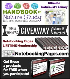 Notebooking Pages LIFETIME Memberships & Outdoor Hour Challenge Giveaway