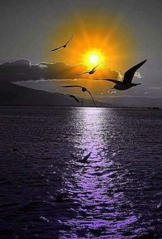 Amezing view of sunset on beach Beautiful Moon, Beautiful Sunrise, Beautiful World, Beautiful Places, Nature Pictures, Cool Pictures, Beautiful Pictures, Amazing Sunsets, Amazing Nature