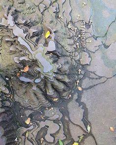 "Polubienia: 16, komentarze: 1 – Roman Lappat (@taleofthebananawhale) na Instagramie: ""#taleofthebananawhale #photography #inspiration #nature #varuslegions #tracing"""