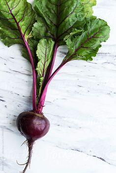Raw organic beets by Adam Nixon - Food, Beet - Stocksy United Vegetables Photography, Eat The Rainbow, Watercolour Tutorials, Kitchen Wall Art, Art Graphique, Small Art, Fruit And Veg, Beetroot, Food Design