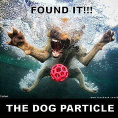 For anyone who doesn't get the humor in this - see the Higgs-Boson, otherwise known as the God Particle, in recent science/physics news at CERN, etc.