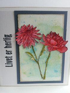 Kort med blomster fra Tim Holst