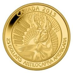 Royal Canadian Mint $25 2013 Pure Gold Coin - Pronghorn $649.95
