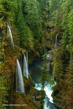Eagle Creek Trail, Oregon, US by Vldn Taylor