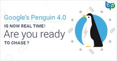 Google's Penguin 4.0 is now real time! Are you ready to Chase? Google Penguin, Amazing Websites, Google S, Penguins, Seo, Penguin