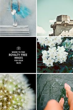 Where to find Roayalty Free Images for your Blog via Love From Ginger