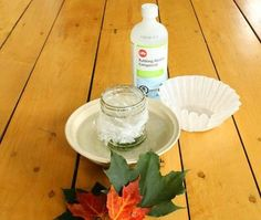 A simple science experiment for kids to explain why leaves change color in Autumn! A great science project for preschoolers. A simple science experiment for kids to explain why leaves change color in Autumn! A great science project for preschoolers. 6th Grade Science, Kindergarten Science, Science Classroom, Teaching Science, Science Education, Fall Preschool Science, Preschool Prep, Environmental Education, Preschool Curriculum