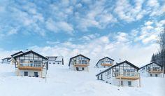landal-winterbergen.jpg (699×408)