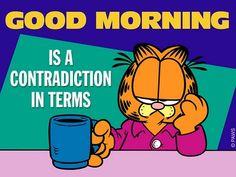 Good morning Garfield