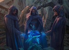 Grovetender Druids MtG Art from Battle for Zendikar Set by Chase Stone High Fantasy, Fantasy Rpg, Medieval Fantasy, Fantasy Artwork, Fantasy World, Fantasy Inspiration, Character Inspiration, Character Art, Character Design