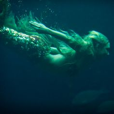 Mermaid// Under The Sea Mermaid Cove, Mermaid Lagoon, Mermaid Tails, Mermaid Art, Mermaid Paintings, Tattoo Mermaid, Vintage Mermaid, Real Mermaids, Mermaids And Mermen