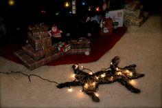 Tacky Christmas, Christmas In July, Christmas Cats, Christmas Humor, Christmas Decorations, Christmas Ornaments, Holiday Decor, Griswold Christmas, Christmas Window Display