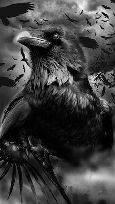 Raven And Wolf, Raven Bird, Gothic Fantasy Art, Fantasy Girl, Rabe Tattoo, Cool Tattoos, Tree Tattoos, Deer Tattoo, Tattoo Ink