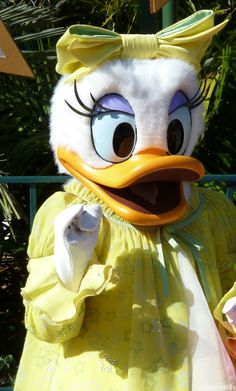 Donald and Daisy Duck Mascot Costume Sale,Free shipping and Fast Shipping - www.mascotshows.com