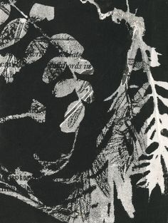 Imprint from plant material onto found cartridge paper with shakespeare text. Kath Williamson