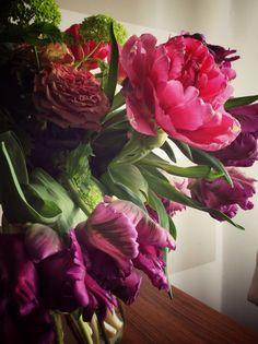 Tulipani viola e ranuncoli