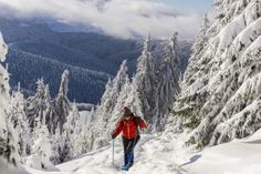 Book a winter guided tour in Romania with Outdoor Activities: hiking tours, rural tours, photography tours and others. Winter Wonderland will fascinate you! Visit Romania, Hiking Tours, Photography Tours, Tour Guide, Outdoor Activities, Winter Wonderland, The Good Place, Tourism, Castle