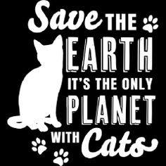 Raise climate change awareness and share your passion for felines in our Save the Earth It's the Only Planet with Cats Mens Apparel featuring paw prints. Crazy Cat Lady, Crazy Cats, Kitty Cats, Cats And Kittens, Cat Signs, Cat Quotes, Beach Signs, Pet Stuff, Black Cats