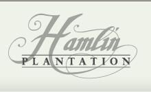Hamlin Plantation in Mt Pleasant, SC - Greg Flanagan, Realtor | RE/MAX Advanced Realty | (843) 952-4444 | Mount Pleasant, SC Homes for Sale | Mount Pleasant, SC Real Estate | Moun...