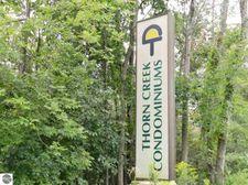 13662 S Thorn Creek Dr Unit 11, Traverse City, MI 49684
