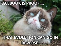 Facebook is proof that evolution can go in reverse.