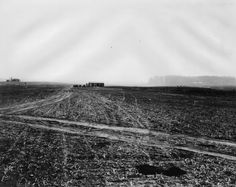 (ca. 1924)* - View of part of the old Wolfskill Ranch, also known as the Rancho San Jose de Buenos Aires. The house, shown here on the extreme left, occupied the present corner of Wilshire Boulevard and Beverly Glen, and UCLA occupies part of the rancho.