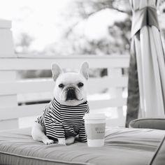 Coffee is always a good idea! #popolli #stripes