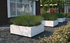 Small front garden idea with planters