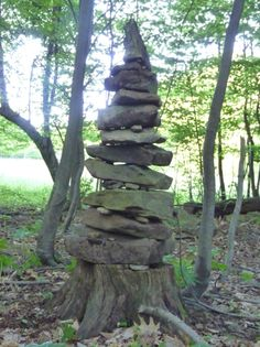 Yggdrasil-styleCairn on stump with light shining through