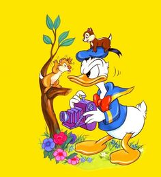 Chip n Dale Donald Duck