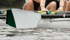 Michigan State Spartans Rowing